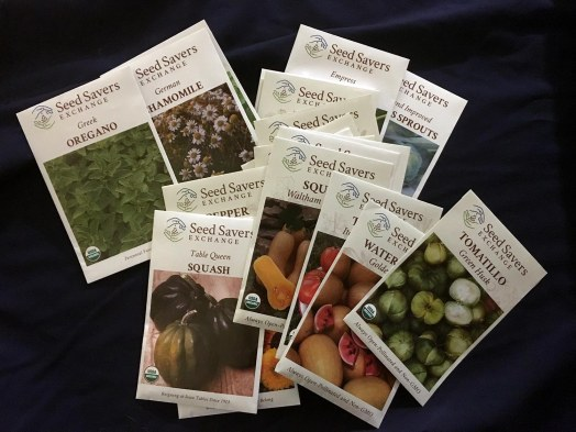 Cancer or Not – I have 22 Varieties of Seeds to Plant